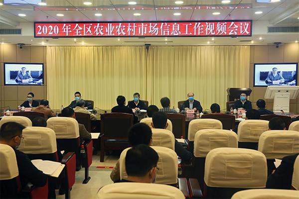 2020年全区农业农村市场信息工作视频会议在南宁召开